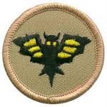 Patrol-Bat