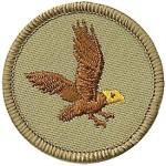 Patrol-Eagle