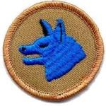 Patrol-Wolf